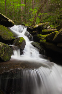 Waterfall, flowing into Little River, Great Smoky Mountains National Park, Tennessee