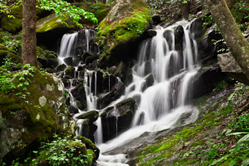 Falls on a small stream flowing into Middle Prong Little River, Great Smoky Mountains National Park, Tennessee