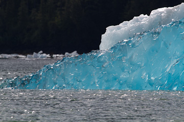 Ice shapes in LeConte Bay