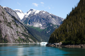 Peering into Tracy Arm