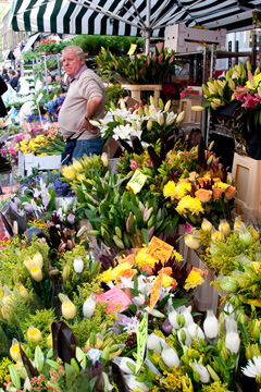 Flowers at the Columbia Road Market