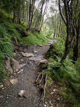The trail along the Water of Nevis, Ben Nevis, Scotland