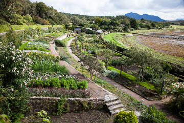A view of Inverewe Garden, Scotland
